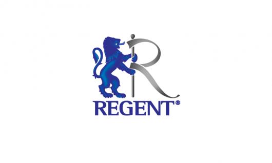 Regent, Scanbrit Детская каникулярная программа Фото 8