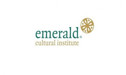 "Emerald (Trinity College) - Курс ""Программирование + математика/инженерия"" Фото 2"