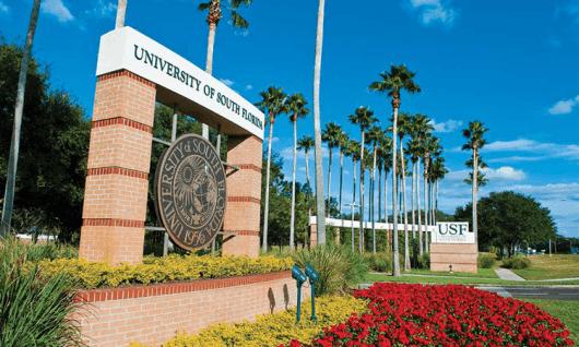 University of South FloridaФото13