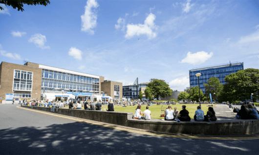 Swansea UniversityФото6