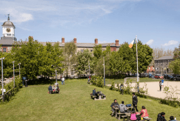 Emerald (Griffith College) - Английский + Спорт для детей Фото 3