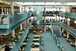 Vistula UniversityФото3