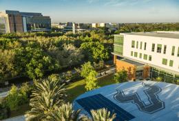 University of South FloridaФото10