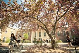 Drew University Фото5